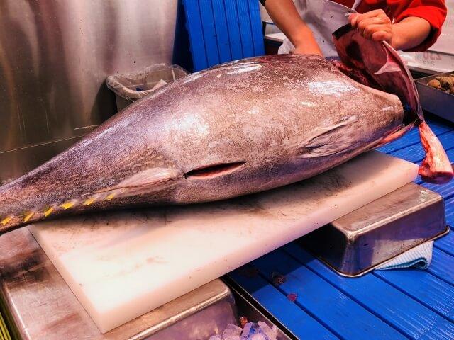 photo of tuna